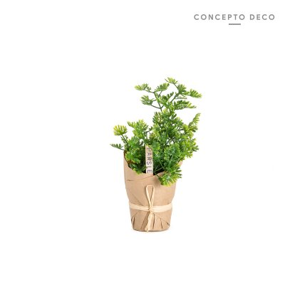 PLANTIN EN PAPEL PARSLEY 20CM